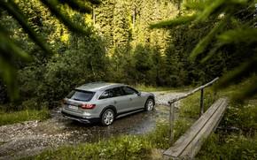 Picture stream, Audi, universal, 2019, A4 Allroad Quattro