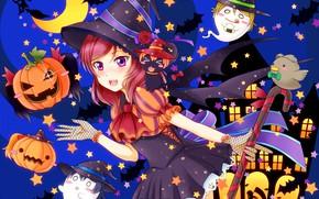 Picture bring, pumpkin, ghosts, Halloween, witch