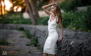 Picture grass, girl, trees, sexy, pose, model, portrait, makeup, figure, slim, dress, hairstyle, brown hair, is, …