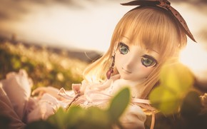 Picture macro, toy, doll