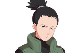 Picture Naruto, Naruto, Shikamaru Nara