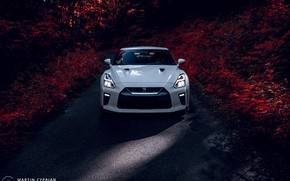 Picture Nissan, GT-R, 2019, Martin Cyprian Photography