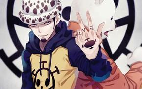 Picture hat, pirate, guy, One Piece, tutochki