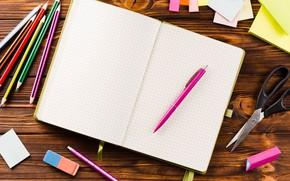 Picture paper, table, pencils, handle, notebook, scissors, erasers