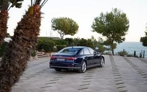 Picture blue, Audi, back, sedan, Audi A8, Audi S8, 2020, 2019, V8 Biturbo, the shore
