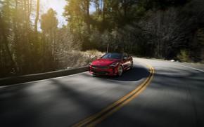 Picture red, turn, KIA, Kia, the five-door, Stinger, Stinger GT, fastback, KIΛ