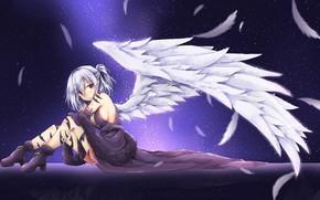 Picture girl, angel, feathers, touhou, kishin sagume, akiteru98