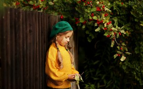 Picture branches, nature, berries, the fence, girl, braids, child, takes, jumper, hawthorn, Valeria Kasperova