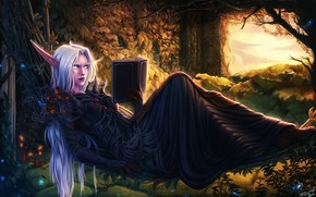 Picture WOW, Fantasy, Art, WarCraft, Elf, Book, Game Art, World of WarCraft, by PersonalAmi, PersonalAmi, Night …