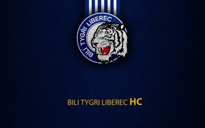 Picture wallpaper, sport, logo, hockey, Bili Tygri Liberec