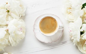 Picture coffee, Cup, white, peonies