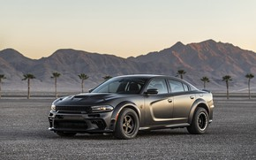 Picture Twin Turbo Carbon, SEMA 2019, SpeedKore, AWD, 2019, Charger, Dodge, the evening