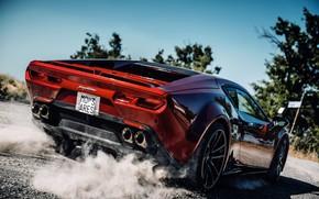 Picture coupe, dust, back, V10, De Tomaso Pantera, Hurricane, Lamborghini Huracan, 2020, two-door, Project1, Panther ProgettoUno, …