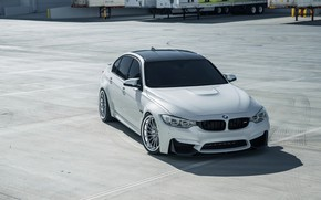 Picture BMW, White, Sight, F81
