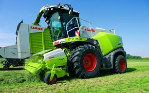 Picture grass, cleaning, Claas, Jaguar 800