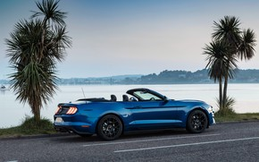 Picture Mustang, Ford, rear view, 2018, Convertible, Ecoboost