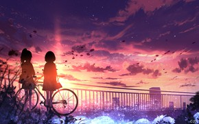 Picture sunset, bike, the city, girls