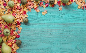 Picture autumn, leaves, background, tree, oranges, colorful, fruit, pear, wood, background, autumn, leaves, autumn, maple