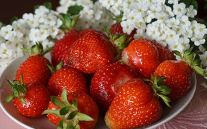 Picture flowers, berries, strawberry