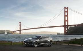 Picture Lamborghini, San Francisco, USA, USA, Golden Gate Bridge, San Francisco, 2018, crossover, Urus