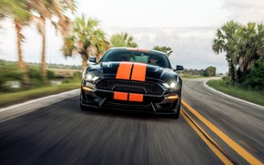 Picture speed, Mustang, Ford, Shelby, front view, GT-S, 2019