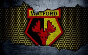 Picture wallpaper, sport, logo, football, Watford