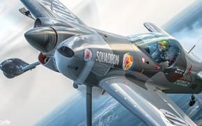 Picture Screw, Pilot, Cockpit, XtremeAir Sbach 300, HESJA Air-Art Photography, Aerobatic aircraft, Aerobatic aircraft