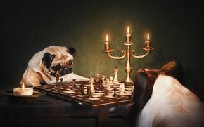 Picture dogs, chess, candle holder, Pug, Papillon, Natalia Ponikarova, английский клуб