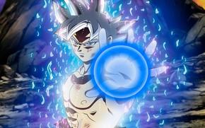 Picture Goku, dragon ball, goku, ultra instinct perfected, dragon ball super, Goku Ultra