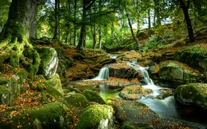 Picture trees, stones, photo, waterfall, moss