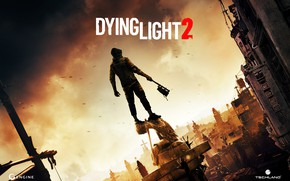 Picture Game, Dying Light 2, The game