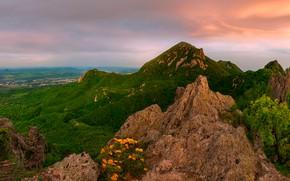 Picture landscape, mountains, nature, morning, The Caucasus, Beshtau