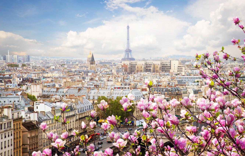 Photo wallpaper France, Paris, Spring.