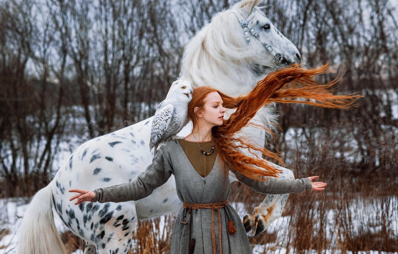 Photo wallpaper winter, girl, pose, horse, bird, horse, hands, red, redhead, long hair, snowy owl, white owl, …