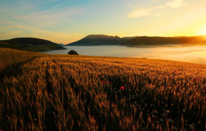 Photo wallpaper sky, landscape, nature, sunset, mountains, lake, sun, hills, mist, Field