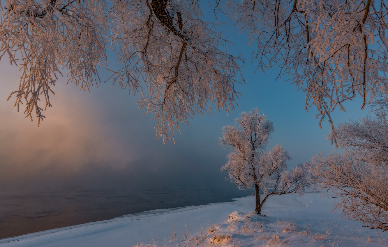 Photo wallpaper winter, frost, snow, trees, morning, frost, Russia, Khakassia, Alexander Makeev