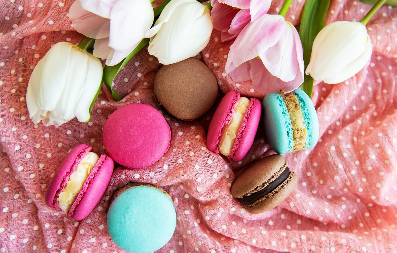 Photo wallpaper colorful, tulips, pink, tulips, macaroons, macaron, macaroon