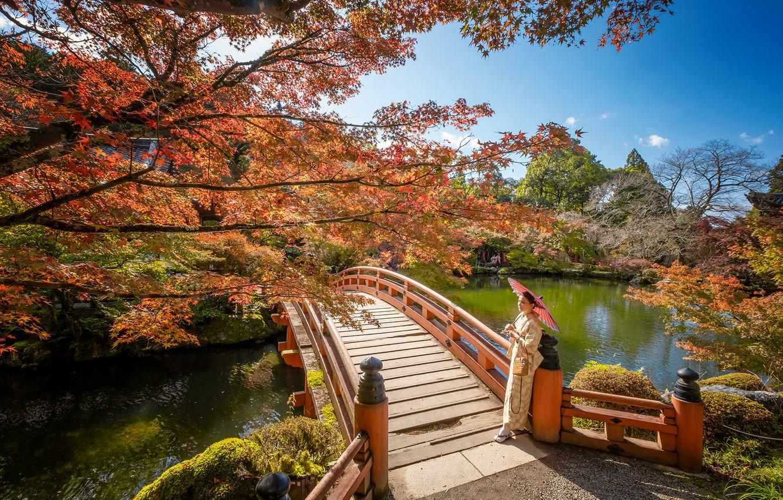 Photo wallpaper autumn, girl, Park, umbrella, Japan, the bridge