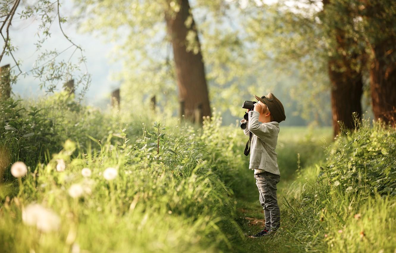 Photo wallpaper forest, boy, binoculars, path