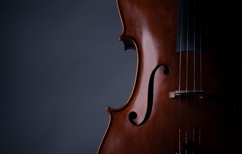 Photo wallpaper music, violin, strings, musical instrument, 2k hd background