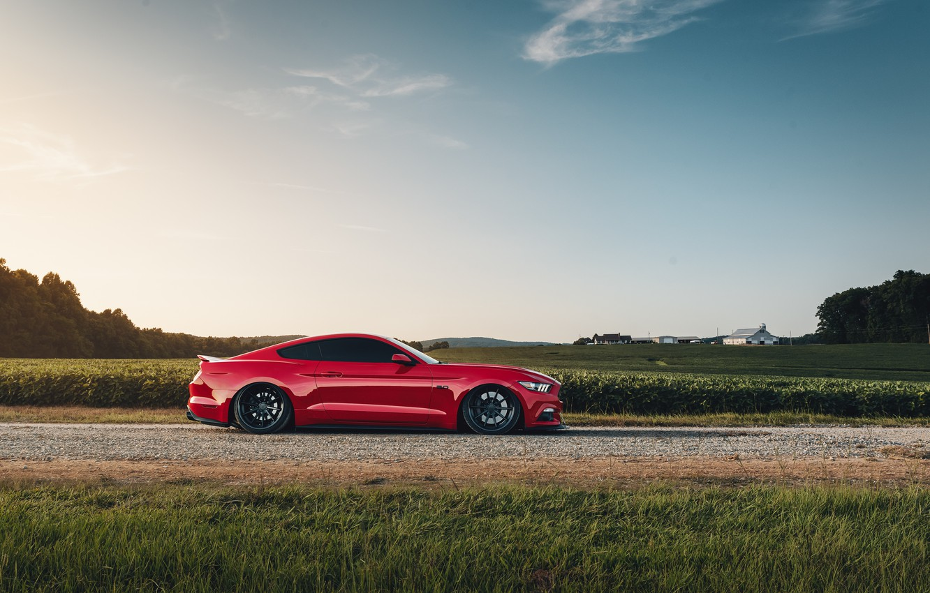 Photo wallpaper Mustang, Ford, side view, 2018, Mustang GT, by Jimmy Zhang