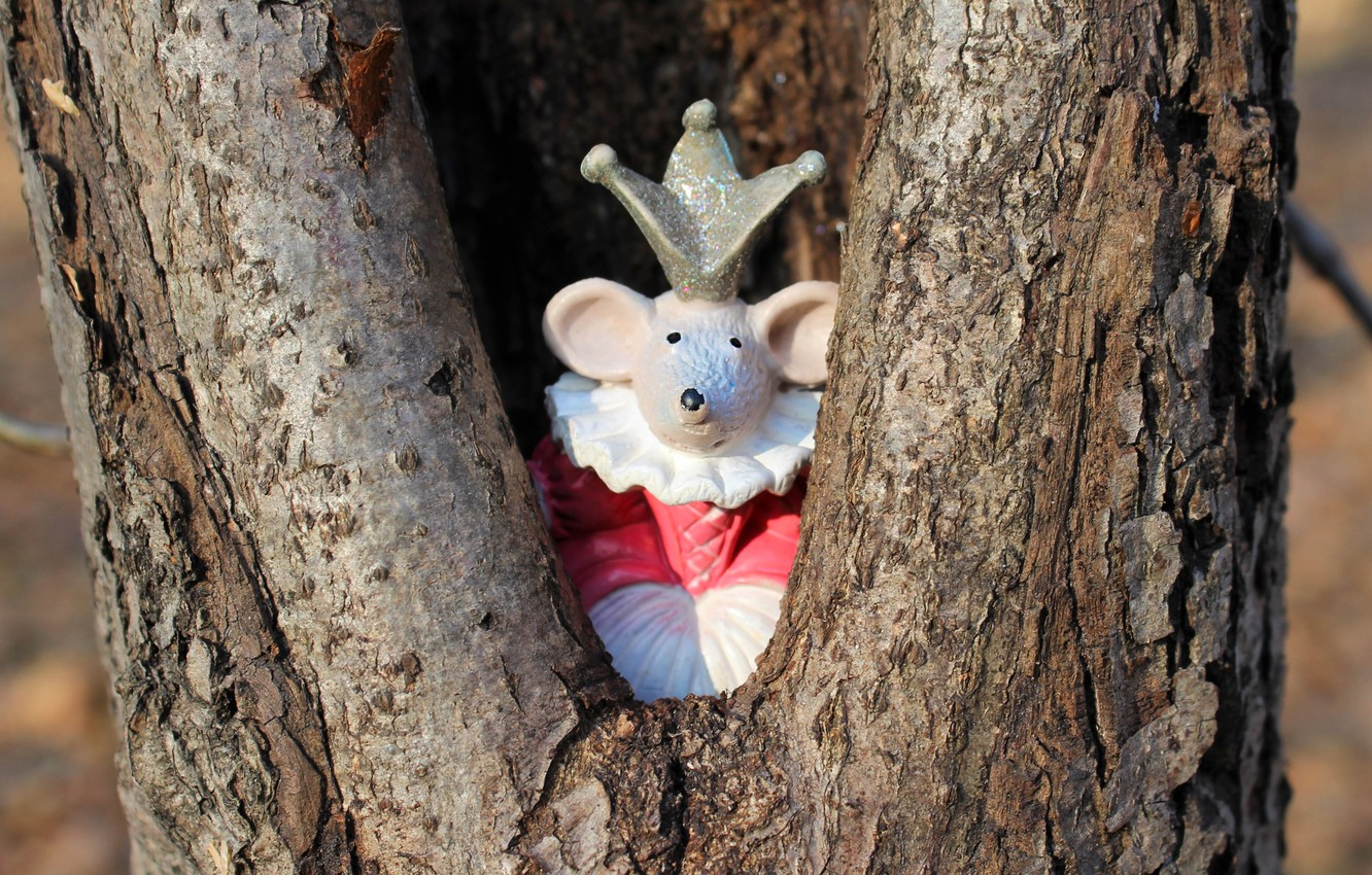 Photo wallpaper look, light, background, tree, toy, crown, mouse, mouse, dress, muzzle, New year, trunk, bark, Princess, …
