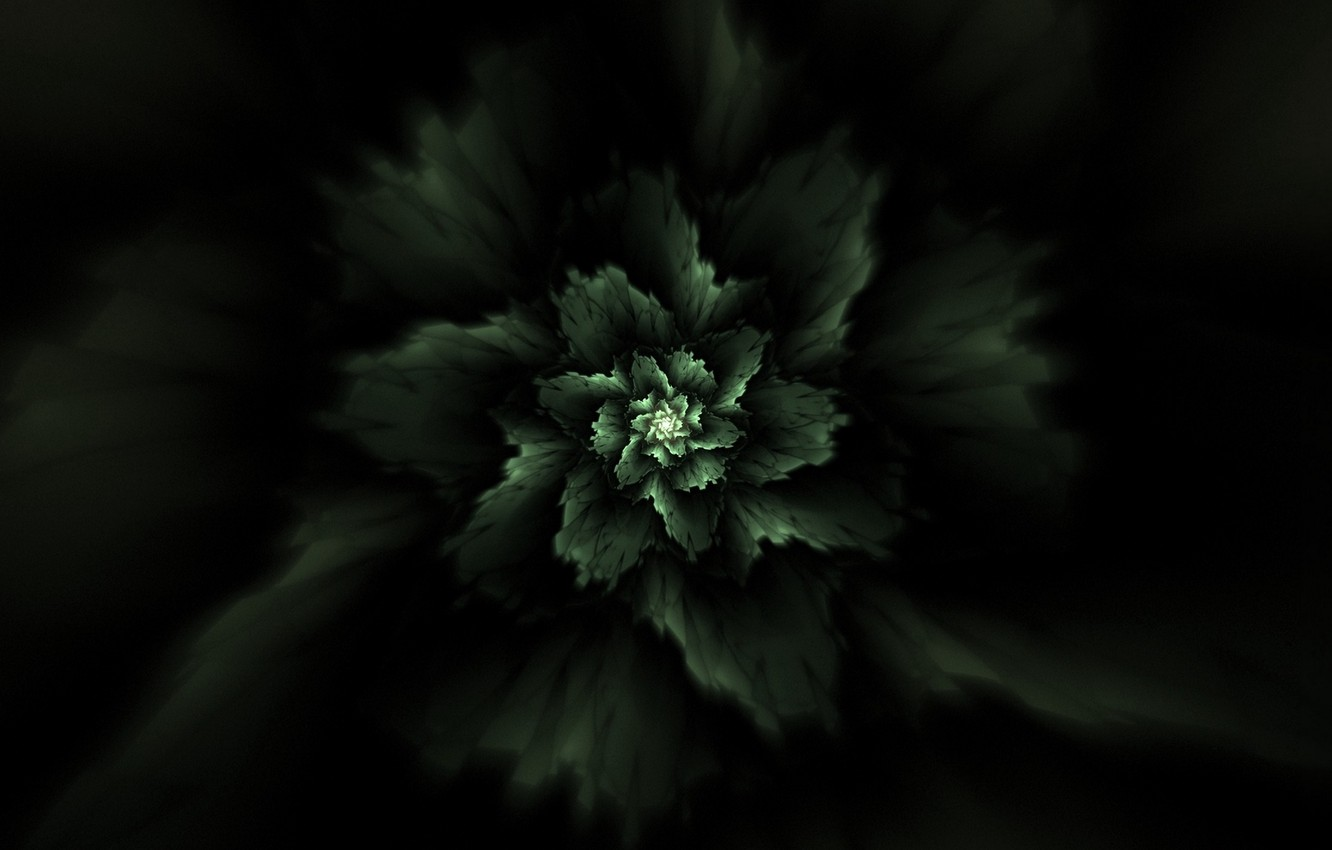 Photo wallpaper abstraction, plant, fractal, abstraction, plant, fractal