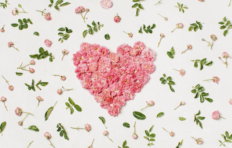 Photo wallpaper love, flowers, heart, petals, love, heart, pink, flowers, beautiful, romantic, valentine, petals, floral
