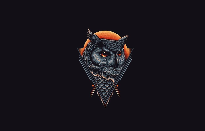 Wallpaper Owl Owl Hastaning Bagus Penggalih Images For