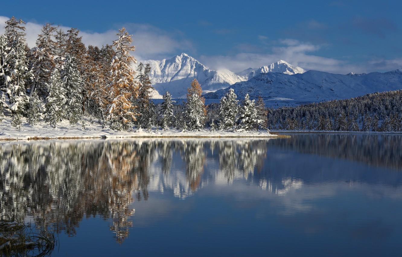 Photo wallpaper winter, trees, mountains, lake, Altay, photographer Galina Khvostenko
