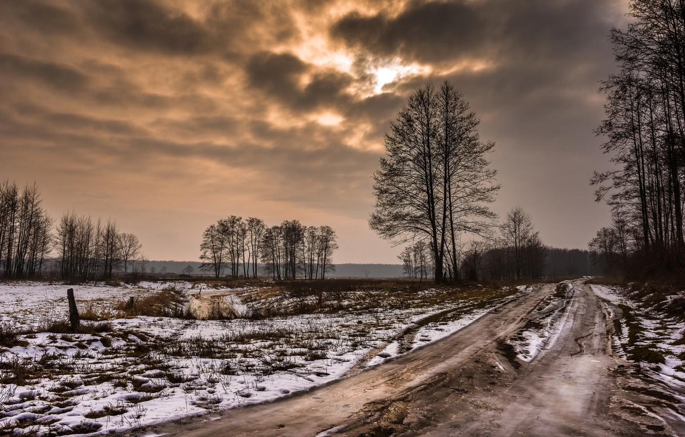 Photo wallpaper winter, road, field, forest, the sky, clouds, snow, trees, clouds, nature, overcast