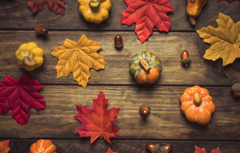 Photo wallpaper autumn, leaves, background, tree, colorful, pumpkin, Board, wood, acorns, background, autumn, leaves, autumn, maple
