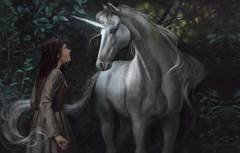 Photo wallpaper meeting, fantasy, art, unicorn, Illustrator, Alex Shiga, How dare you