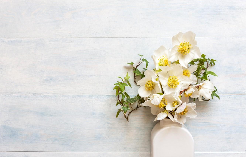 Photo wallpaper flowers, bouquet, vase, white, hellebore